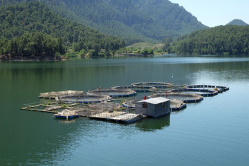fish farms in Karacaoren Dam, Isparta, Turkey