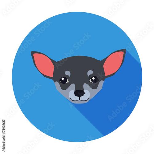 Small Muzzle Of Chihuahua Dog Cartoon Drawing Stockfotos Und