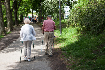 Powerful happy elderly people are walking with hiking sticks, canes