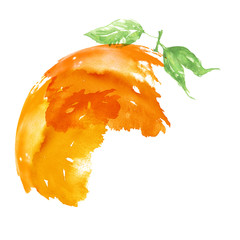Abstract watercolor stain, blot, splash of orange paint. Abstract logo, orange. Fashionable illustration for your design, advertising. Citrus Fruit On A White Isolated Background.