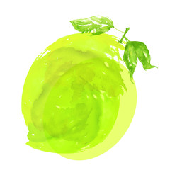 Watercolor logo - lemon, lime figure, abstract illustration, splash of green paint on a white spaced background. Fashionable art.