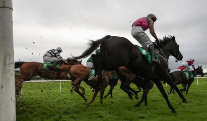 Race horses and jockeys jumping hurdles
