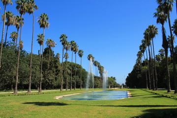 Le Jardin d'essai du Hamma à Alger, Algérie