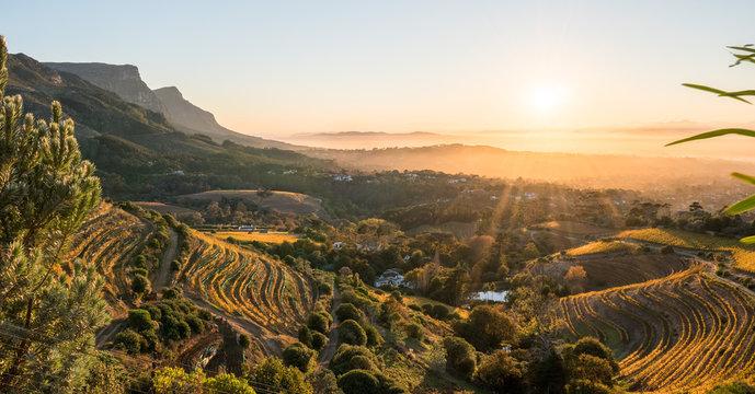 Eagle's Nest Winery
