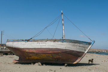An old boat lays dormant on the beach with a small dog resting in the shadows
