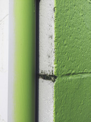 Detail of painted green corner of building and gutter pipe