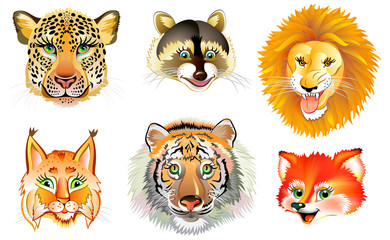 Set of different wild animals heads on white background. Vector cartoon image.