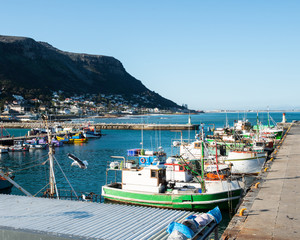 harbour at cape town
