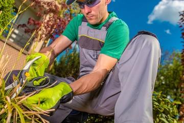 Men Working in a Garden