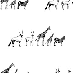 Seamless pattern of hand drawn sketch style oryx, gazelle, giraffe and zebra. Vector illustration isolated on white background.