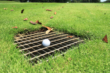 Golf Ball on the Drainage Screen Immovable Obstruction Rule 24