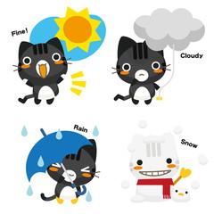 ネコとーく。黒トラ+天気予報
