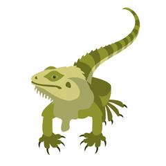 Fototapeta premium lizard vector illustration style flat front side