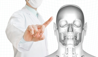 Doctor pointing to an virtual 3d skeleton