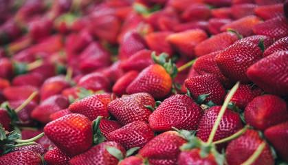 Red strawberry fruit. Fresh harvested strawberries - background from freshly harvested strawberries
