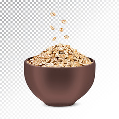 Vector realistic illustration of oatmeal and muesli.
