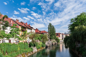 Riverbank of the Ljubljanica in Ljubljana Europe colorful river embankment green trees and red roof houses