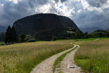 Small rural countryside road going through the field mountain on the background sunny day with the cloudy sky in Slovenia Europe