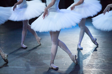 performance, choreography, dancing concept. elegant legs of amasing beautiful ballerinas standing in identical poses of graceful and dignified birds, snowy white swans