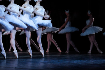 ballet, art, tradition concept. four young caucasian girls wearing dresses decorated with feathers dancing well-known part of ballet swan lake, la danse des petite cygnes