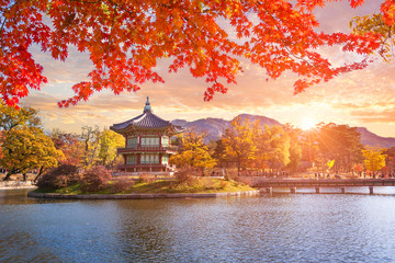 Maple trees with a lake at gyeongbokgung palace, Seoul, South Korea.