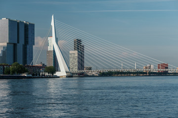 Rotterdam city cityscape skyline with Erasmus bridge and river. South Holland, Netherlands.