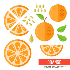Orange. Whole orange and parts, slices, seeds, leaves. Set of fruits. Flat design graphic elements. Vector illustration