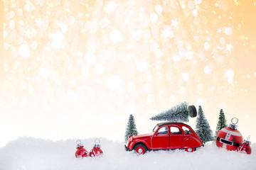 Besuch zu Weihnachten