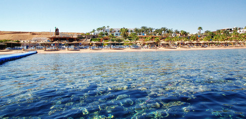 Chaise lounge and parasols on the beach against the blue sky and sea. Egypt, Sharm El Sheikh