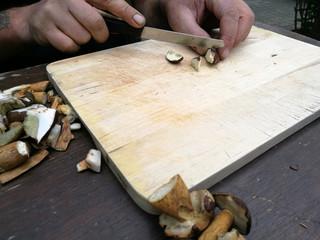 Maronenröhrlinge Pilze schneiden