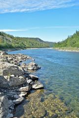 Summer landscape, northern river.