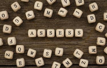 Word ASSESS written on wood block