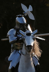 Australian jousting knight Cliff Marisma loses an ornamental bird off his helmet during the inaugural World Jousting Championship at the St Ives Medieval Faire in Sydney, Australia