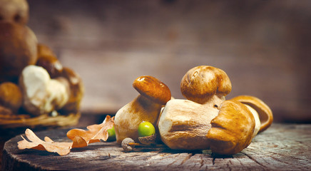 Cep mushrooms. Boletus isolated over wooden background