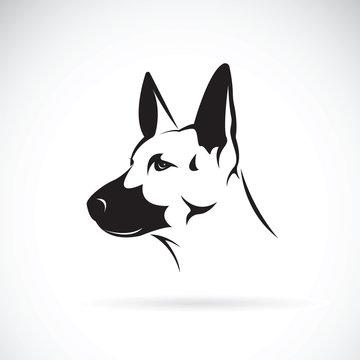 Vector of dog head (German shepherd) on white background, Pet. Animals.