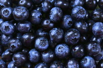 Canadian blueberries