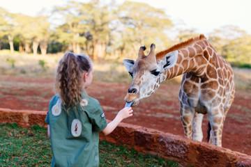 Cute little girl feeding giraffes in Africa