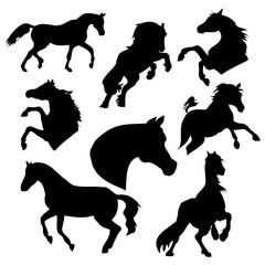 Silhouette horse on white background, vector illustration set