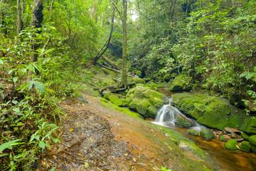 Tan Tip waterfall, Phu Soi Dao National park, 2100 msl, Uttaradit province, Thailand