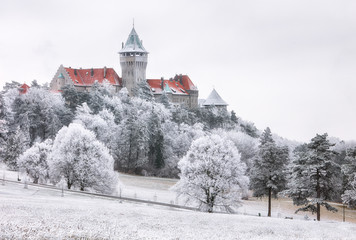 Fotobehang Kasteel Winter Forest clouds Landscape with Smolenice castle, Slovakia