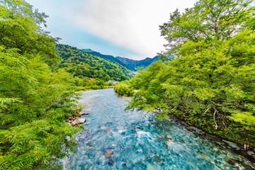 山奥の木々と川の流れ