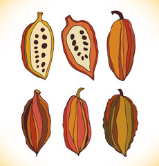 Vector set with drawn isolated cocao beans. Beauty collection with decorative silhouettes of chocolate cocoa beans