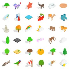 Reservation icons set, isometric style