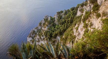 Panorama of cliff on Capri Island, Italy