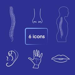 human organs icon. Vector icon set
