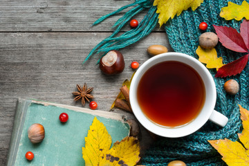 Autumn background with dry leaves, scarf, cup of tea with spices and vintage book