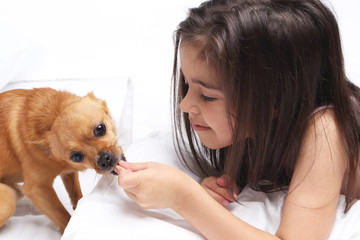 Beautiful little girl with dog in white bed