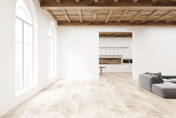 White kitchen interior and living room