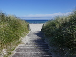 Way to the beach between the dunes