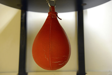 Speedbag Punching Bag In Gym Used For Boxing